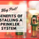 5 Benefits of Installing a Sprinkler System