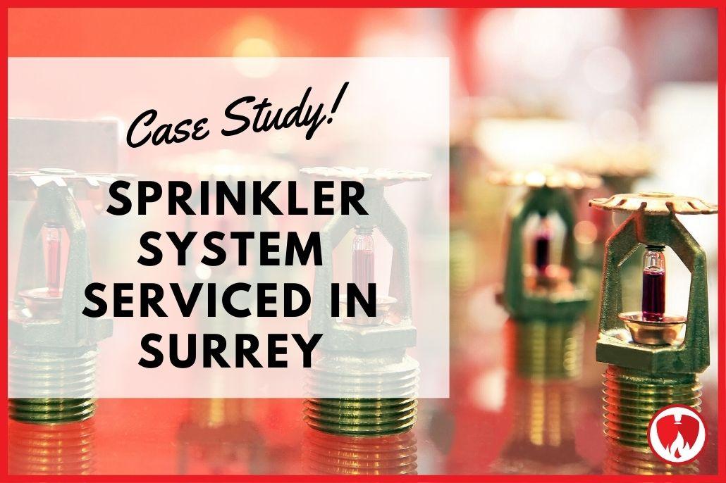 Sprinkler System Serviced in Surrey